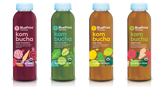 blueprint kombucha