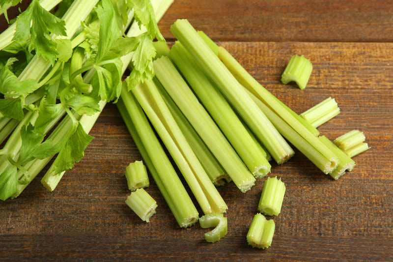 celery negative calories