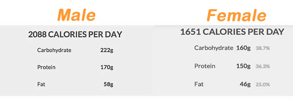 Day Flexible Dieting Meal Plan With Macros